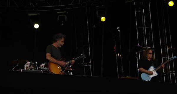 The Dead at Rothbury Photo Mike Hardaker Mountain Weekly News