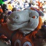 Denver Broncos Orange Sunday