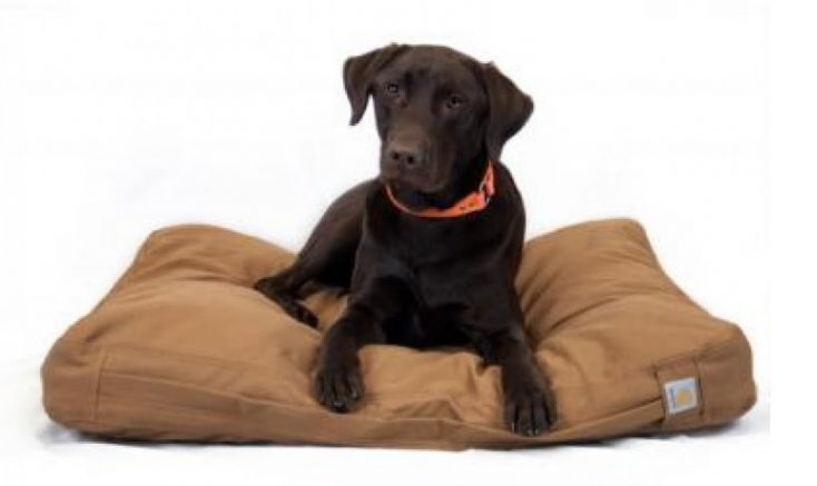 Carhartt Duck Dog Bed Review