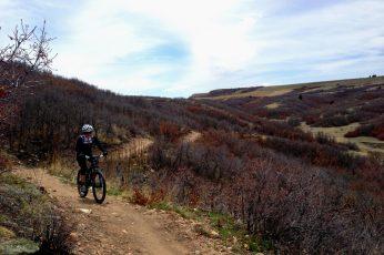 Top 5 Front Range Colorado MTB Trails