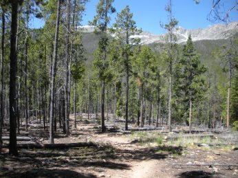 Peaks Trail Mountain Bike Trail