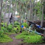 Jasri Bali Photo Laura Patten | Mountain Weekly News