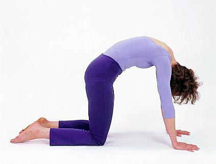 4 easy exercises for lower back pain  mountain weekly news