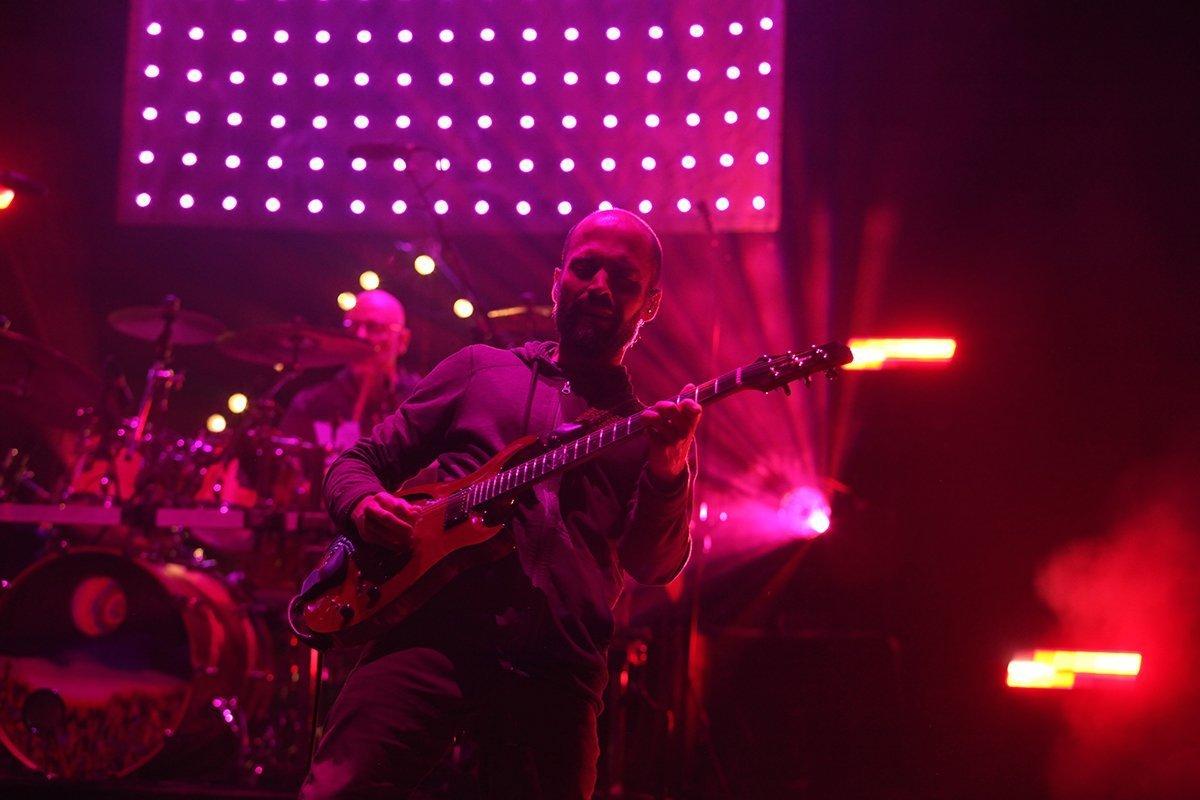 Lotus Guitar Player