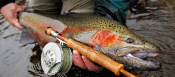 Best Fly Fishing Gear of the Year