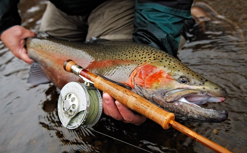 fly fishing essentials equipment gear guide mountain