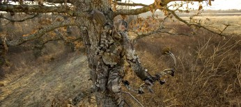 Bow Hunting Considerations