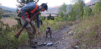 Bird Hunting Gift Ideas for the Upland Hunter