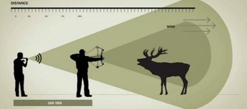 Bow Hunting Gear 101: Elk Calls and Scent Lock Clothing