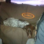 Mud River Dog Seat Cover Review