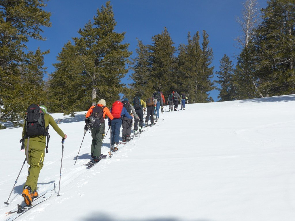 AIARE Avalanche course with Jackson Hole Mountain Guides, Photo Mike Hardaker   Mountain Weekly News