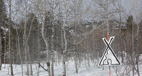 Jackson Hole PowWow Photo Mike Hardaker (3)
