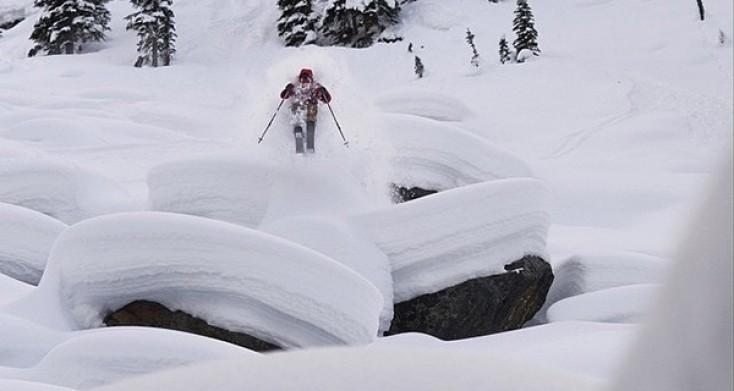 WSD Amalgamates Steering Towards a Custom Ski