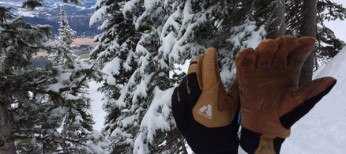 Eddie Bauer Guide Gloves Review