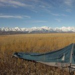 Advanced Bivy Sack by Outdoor Research