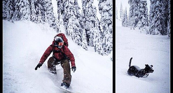 Early Christmas shred on the Exodus Photo | Mountain Weekly News