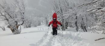 Korua Shapes APOLLO 56 Snowboard Review