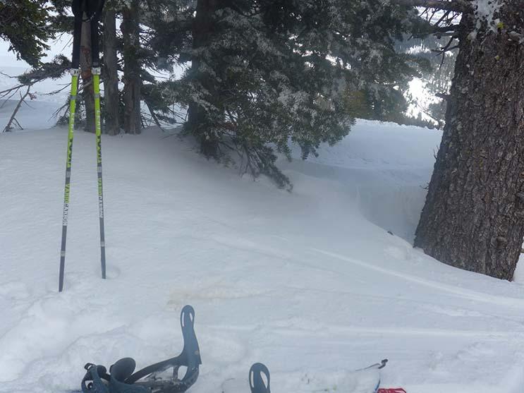 LEKI Splitboard Poles Photo Mike Hardaker | Mountain Weekly News