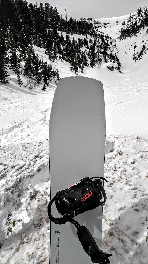 Korua Shapes Asytonia Photo Cody C. | Mountain Weekly News