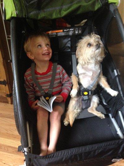 Burley D'Lite Bike Trailer Kids and Dogs