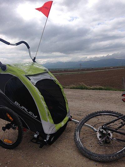 Burley D'Lite Bike Trailer (4)