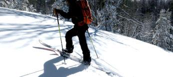 8 Best Poles for Splitboarding