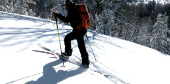 8 Best Poles for Splitboarding