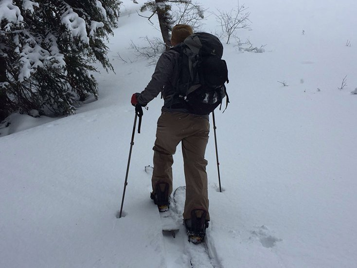 Splitboard Pants from Patagonia