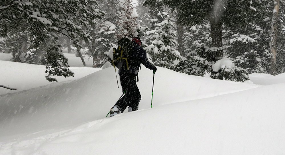 Rossignol Touring Pro Foldable