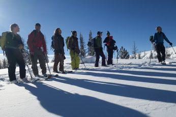 Best Alpine Touring Skis