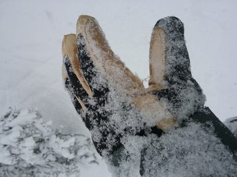 Free The Powder Short Cuff Glove Review