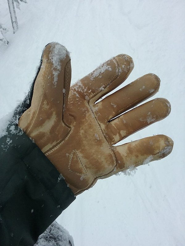 Free The Powder Ski Glove