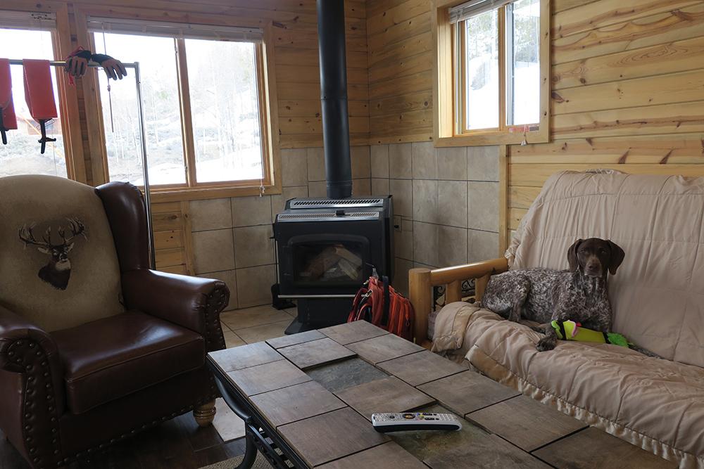 Big Diamond Ranch Dog Friendly Cabin