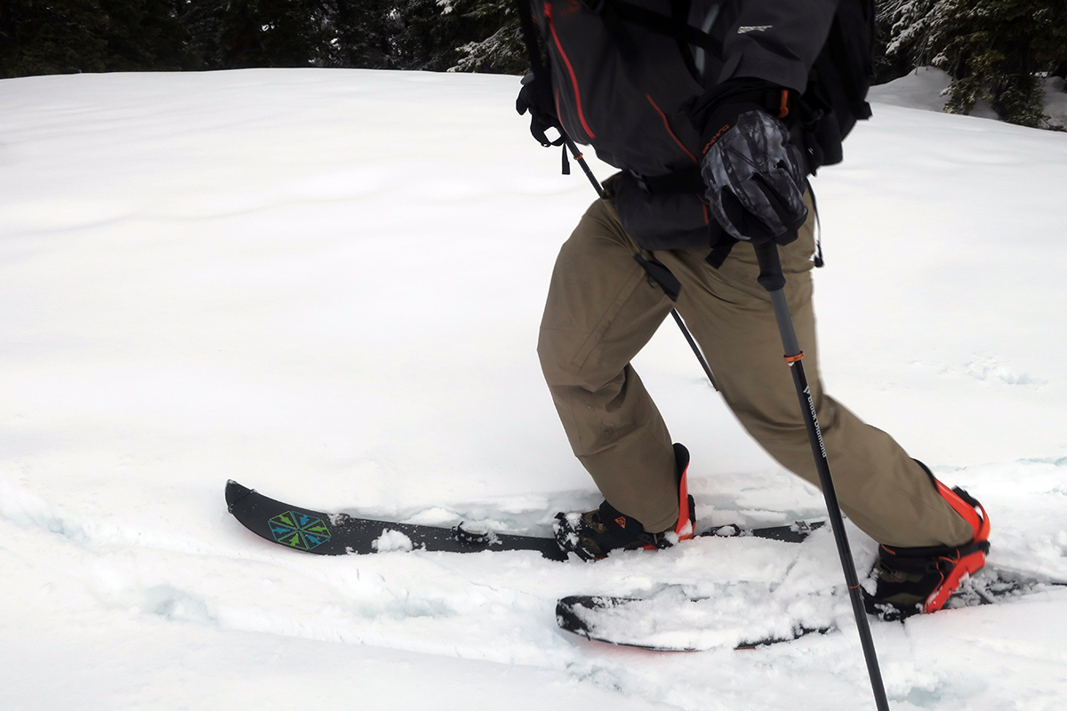 Black Diamond Carbon Compactor Ski Poles Review