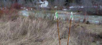 Grass Sticks Custom Bamboo Ski Poles