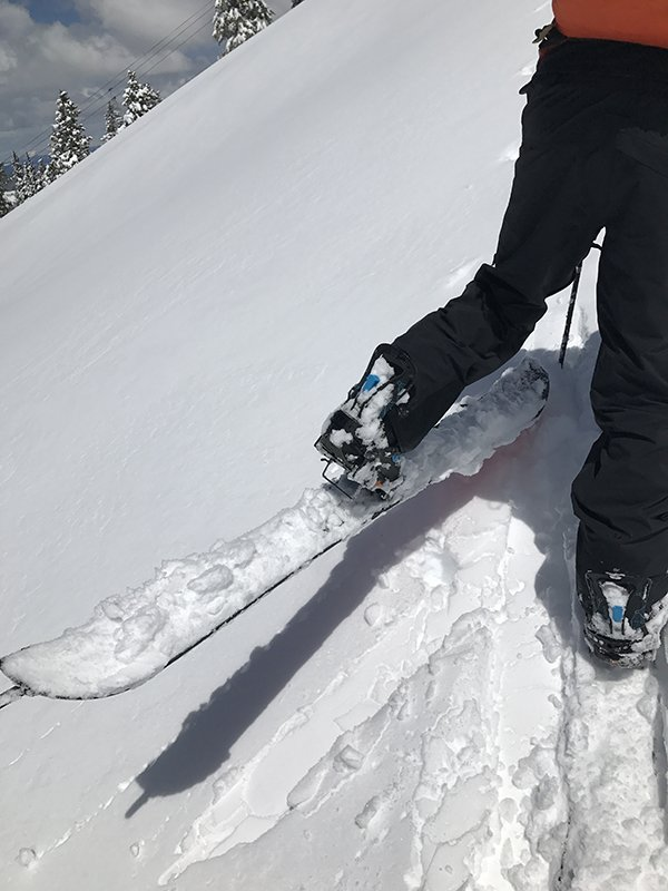 Venture Paragon Splitboard Top Sheet Snow