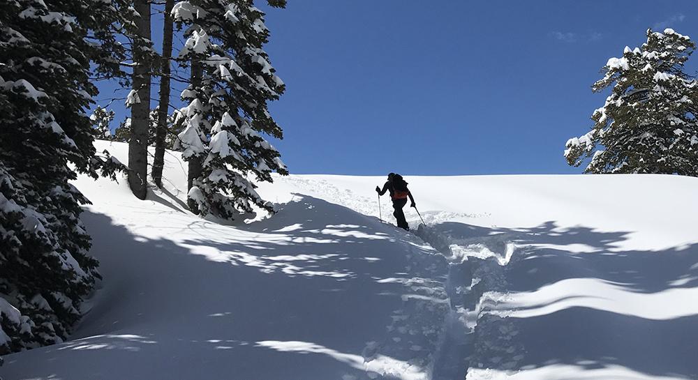 Venture Paragon Touring Splitboard Uphill