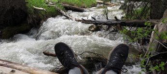 LOWA Innox Evo GTX Lo Hiking – Trail Running Shoe Review