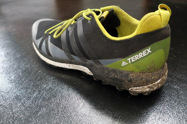 adidas Terrex Agravic Shoe Dirt
