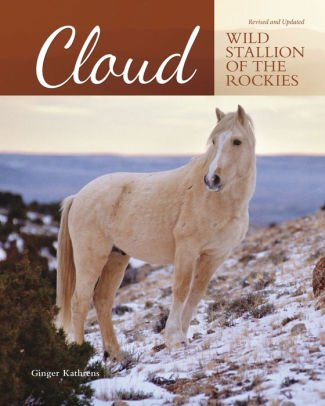 Stallion Cloud Book