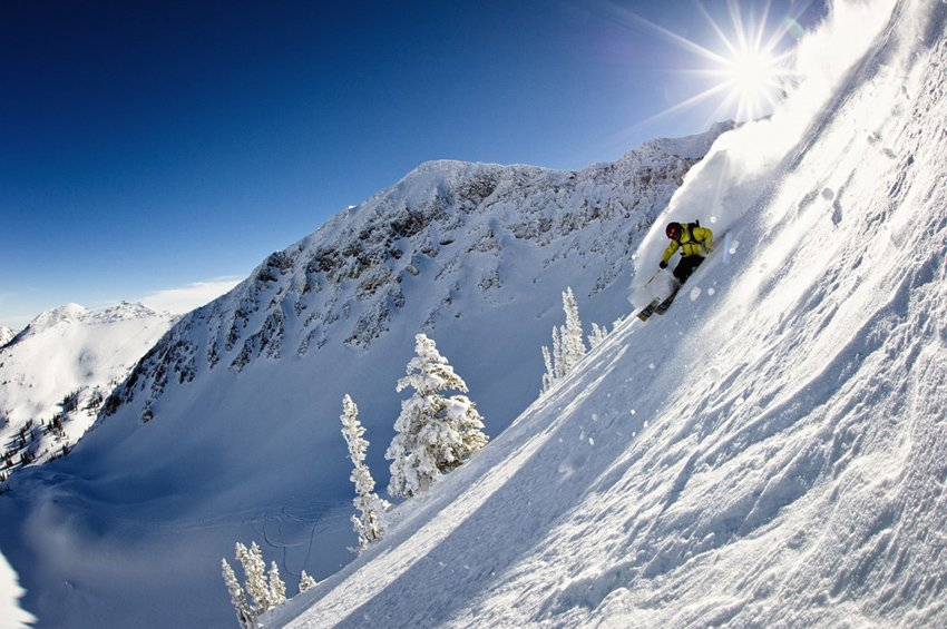 Snowbird Ski Powder Skiing