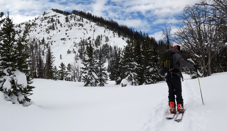 Splitboard Skins Buyers Guide : Top 10 Skins for Splitboarding