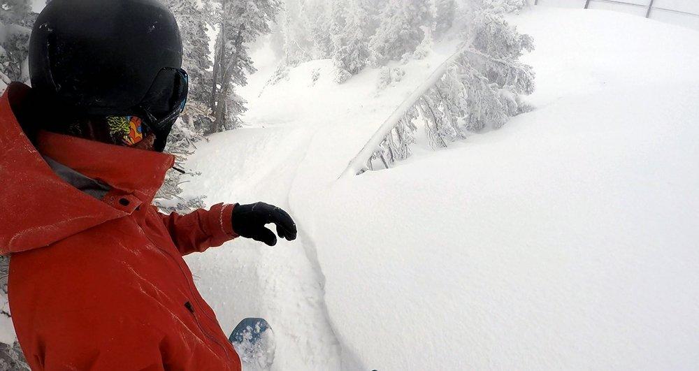 Burton Snowboards AK Hover Jacket Neck Gasket Collar