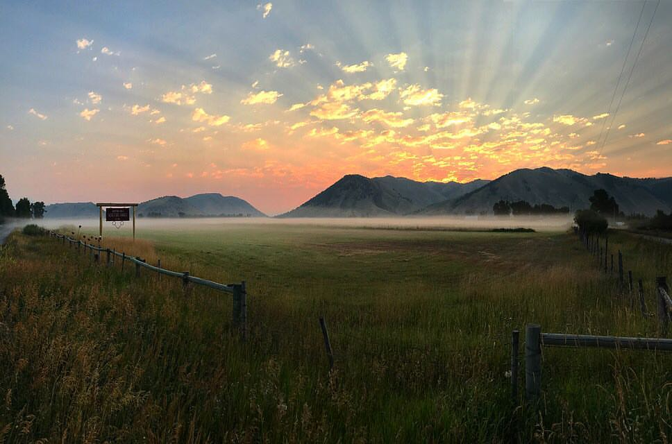 Jackson Hole Hereford Ranch Sunset in Wyoming