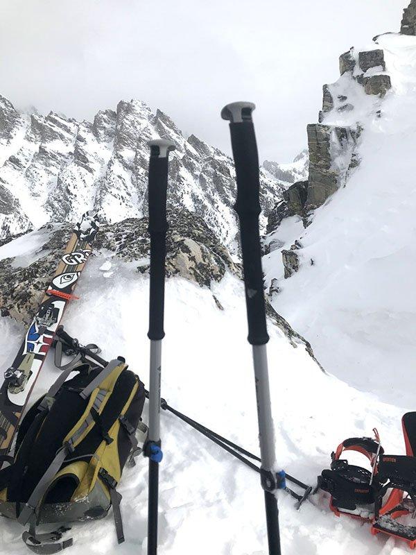 Black Diamond Expedition 3 Ski Pole