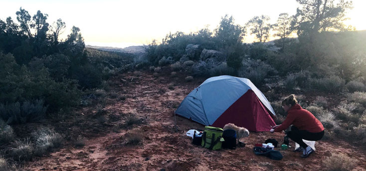 MSR Elixer 3 Tent with Footprint Review