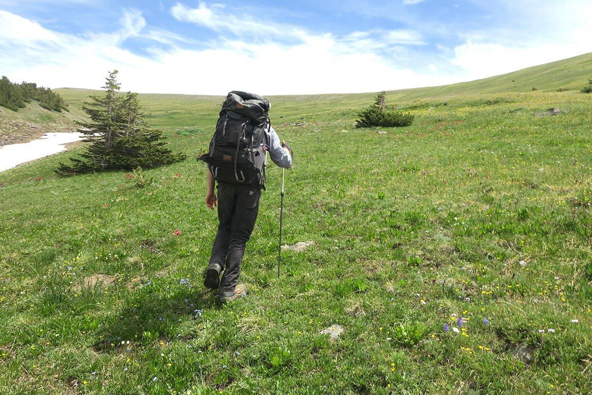 Hiking Togwotee Pass Wyoming