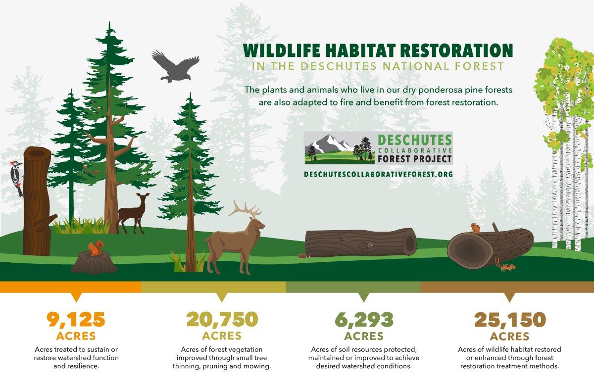 Deschutes National Forest Oregon wildlife habitat restoration