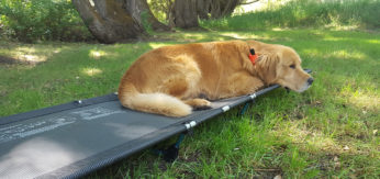 Big Agnes Helinox Cot Lite Offers a Good Nights Sleep Outdoors
