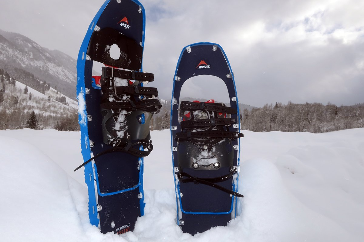 Image result for snowshoe""